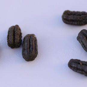 Comme pour toutes les chenilles la nourriture doit être abondante. Les crottes laissées par la chenille de Deilephila elpenor font un cm de longueur.